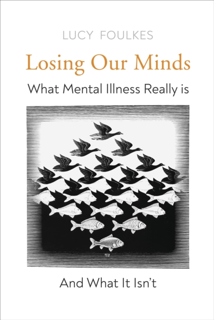 Losing Our Minds : What Mental Illness Really Is – and What It Isn't