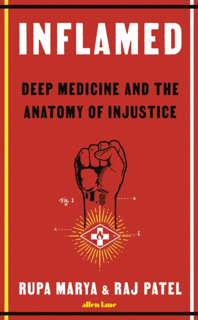 Inflamed : Deep Medicine and the Anatomy of Injustice