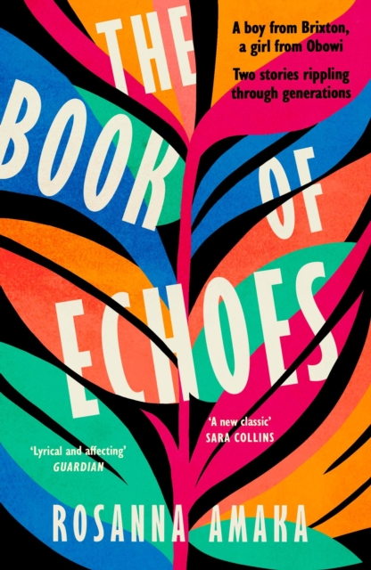 The Book Of Echoes : The 'powerfully redemptive' debut of love and hope rippling across generations